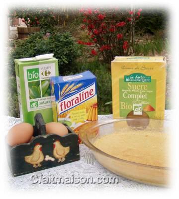 recettes de desserts aux laits v g taux base de semoules de c r ales et autres. Black Bedroom Furniture Sets. Home Design Ideas