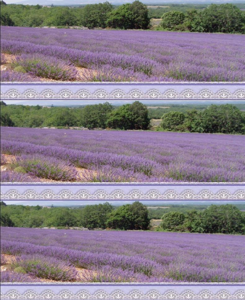 Berühmt Décoration de salle et de tables sur le thème de la Provence  UZ07