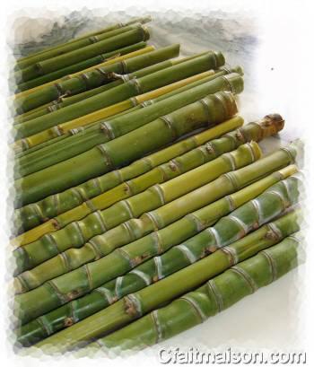 Composition florale sur fagot de bambous - Replanter un bambou coupe ...