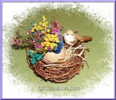 Oiseaux avec fleurs - Comment faire fuir les oiseaux des cerisiers ...