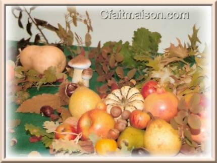 http://www.cfaitmaison.com/brico/imagestheme/recolte-fall.jpg