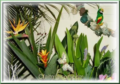 Decoration De Salle Et De Tables Sur Un Theme Exotique Ou Tropical