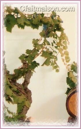 D coration de salle et de tables sur le th me des for Cep de vigne decoration