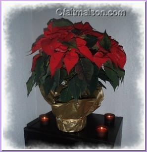 Cfaitmaison Decoration Noel