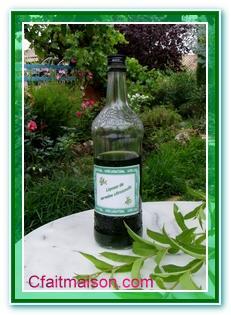 Les boissons alcoolis es faites maison ap ritifs for Alcool de verveine maison
