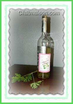 liqueur de verveine citronnelle maison