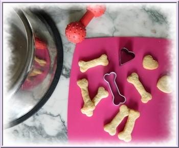 Cuisiner pour son chien biscuits g teaux p t e - Cuisiner pour son chien ...