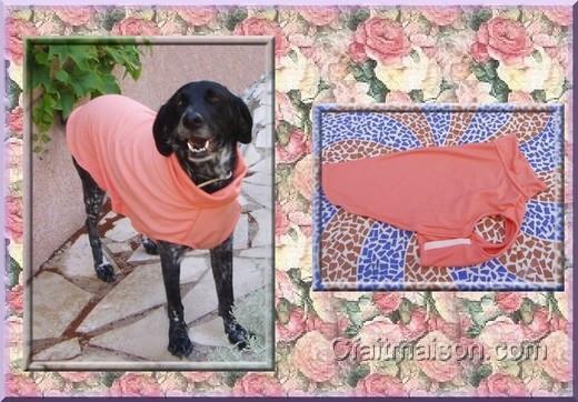 adopter un chien faire un manteau pour chien une niche. Black Bedroom Furniture Sets. Home Design Ideas