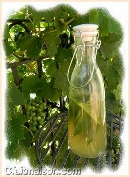 Seconde fermentation de la boisson k fir de fruits une for Plante kefir