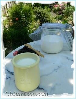 Kéfir de lait fait maison