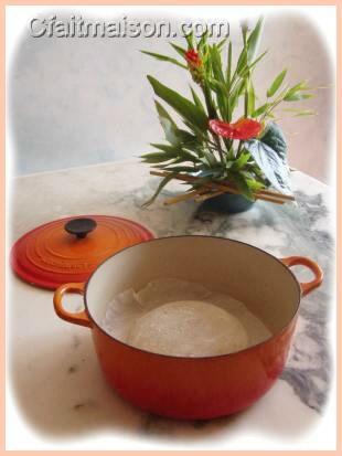 pâton d'un pain au levain naturel de kombucha mis à lever en cocotte en fonte